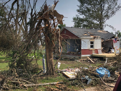 Broken tree and small house with roof caved in