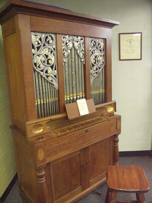 Kurtz organ