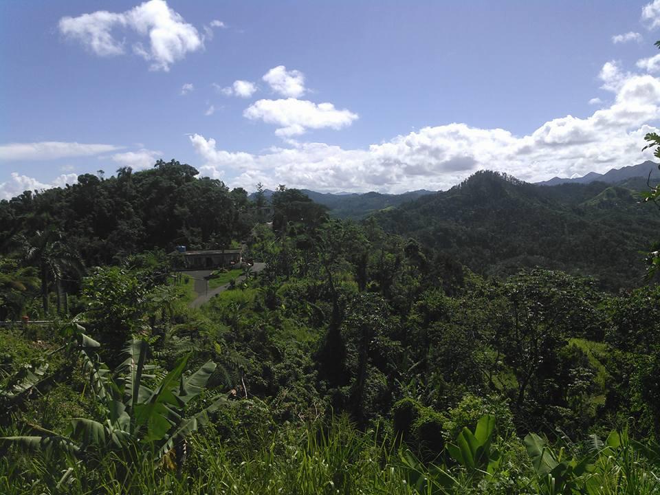 Puerto Rican scenery