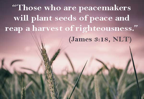 Those who are peacemakers will plant seeds of peace