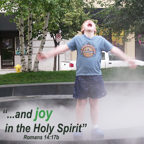 and joy in the Holy Spirit