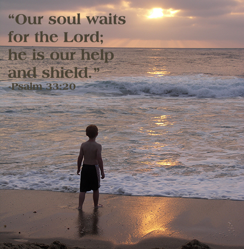 Our soul waits for the Lord; he is our help and shield