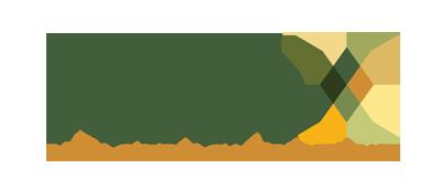 FaithX logo